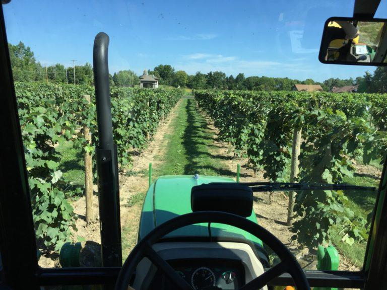 Tractor going through vineyards